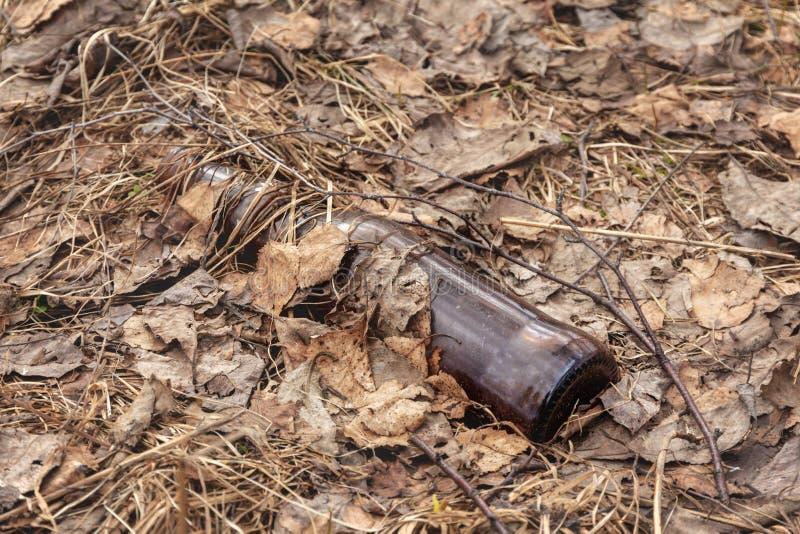 Piwna butelka podrzucająca za - zanieczyszczenie środowiska obrazy stock