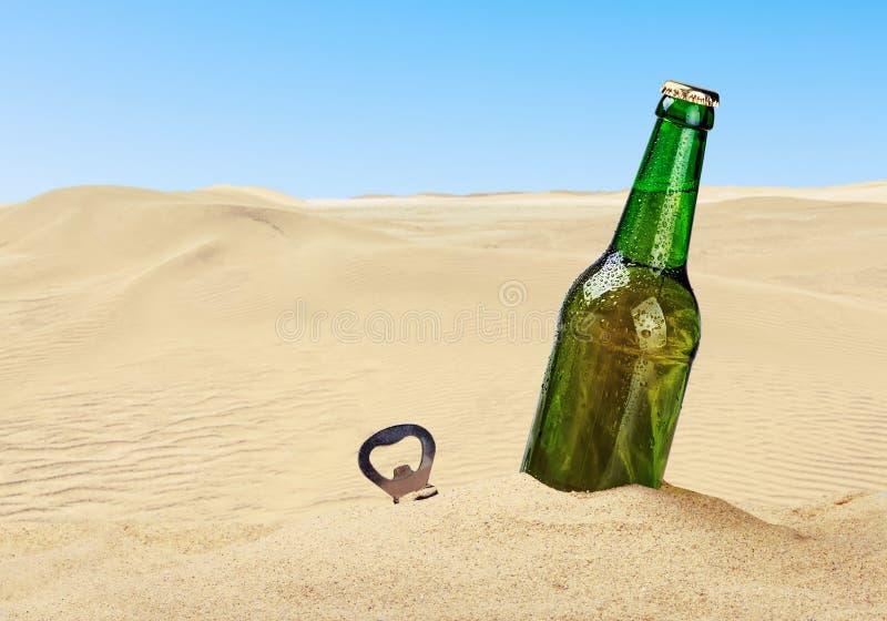 Piwna butelka w piasku obraz royalty free