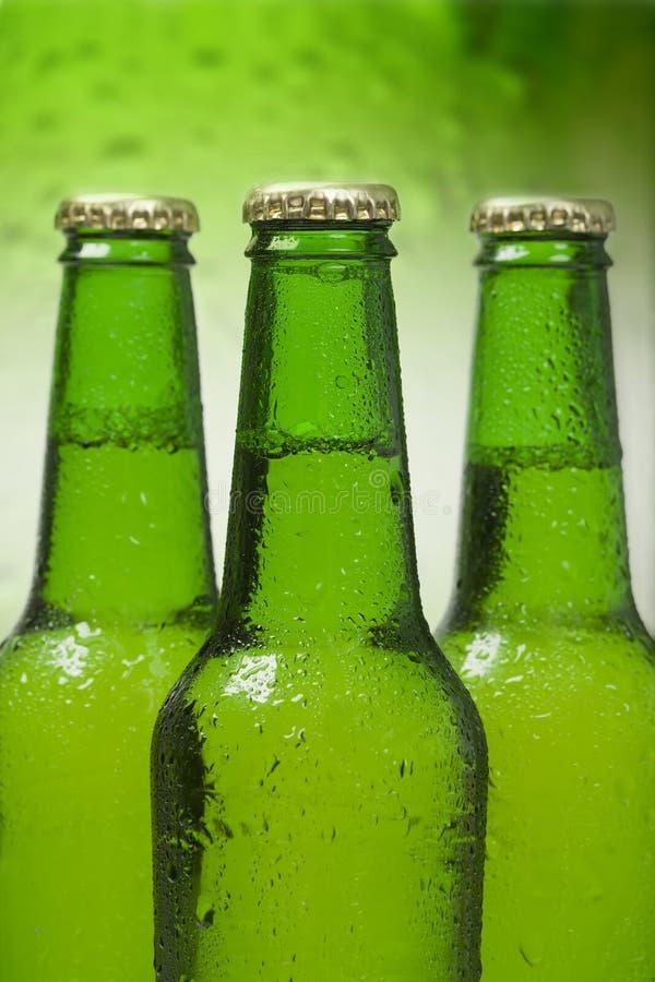 piwne butelki zdjęcie stock