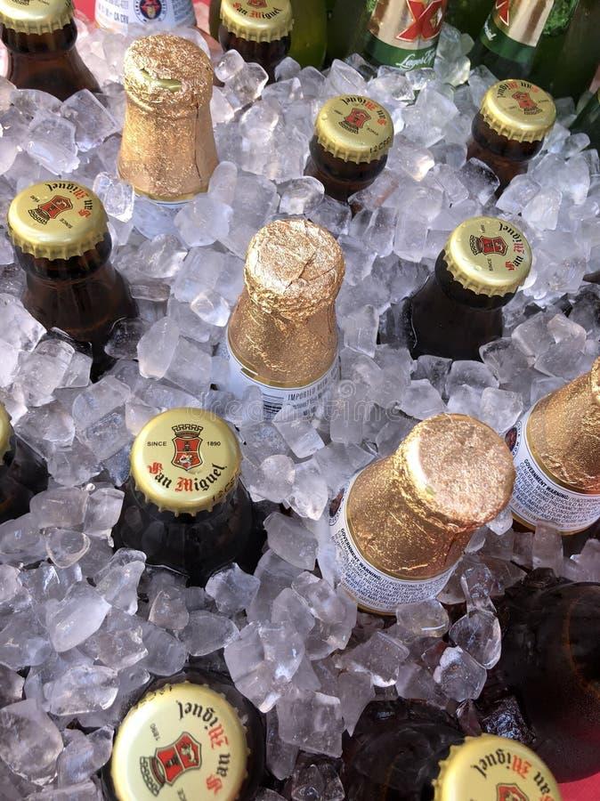 Piwne butelki w lodzie obrazy royalty free
