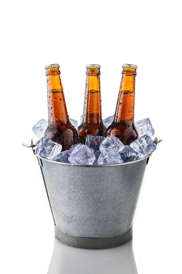 Piwne butelki w wiadrze lód obraz stock