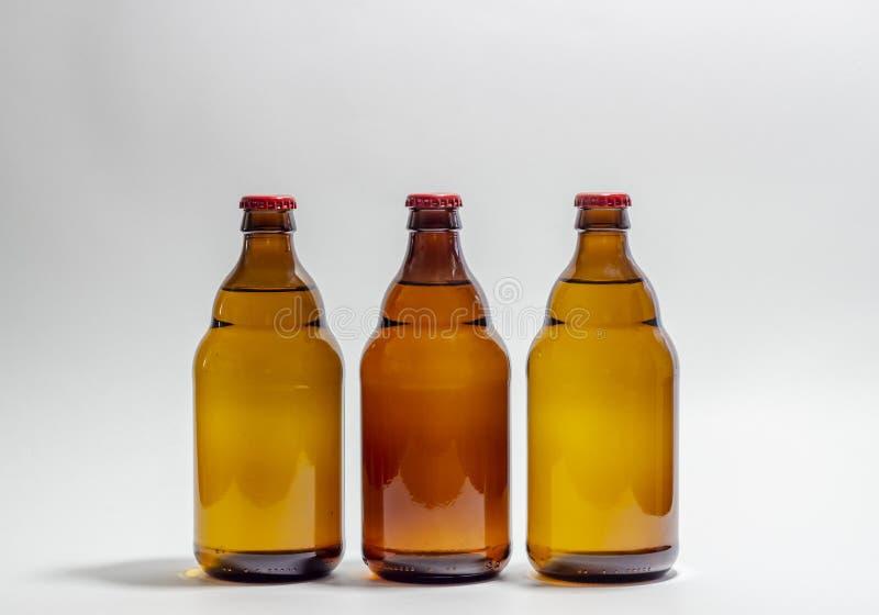 Piwne butelki z czerwień korkiem na szarym tle Projekt minimalista kreatywnie pomys? Egzamin pr?bny zdjęcie royalty free