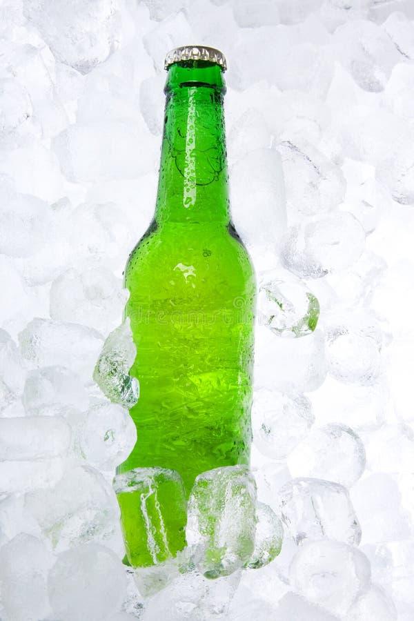 piwnej butelki lód zdjęcia stock