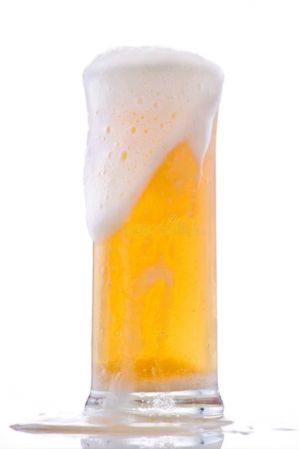 piwny zimny szkło fotografia stock