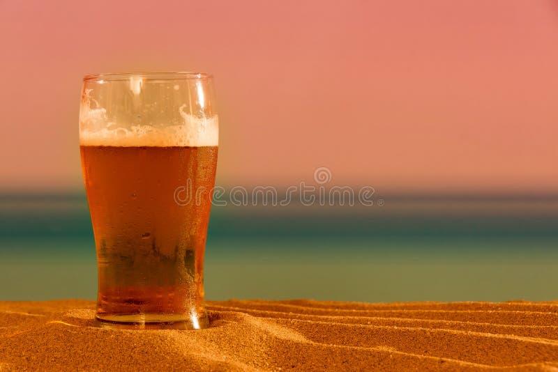 Piwo na plaży obraz royalty free