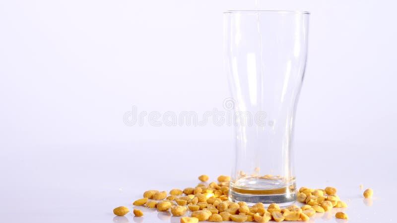 Piwo nalewa w szkło na białym tle z Kiszonymi arachidami zdjęcie stock