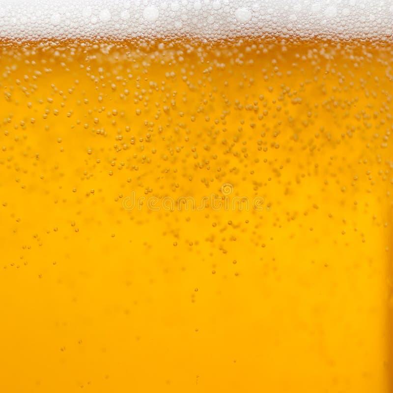 Piwo piana obraz stock