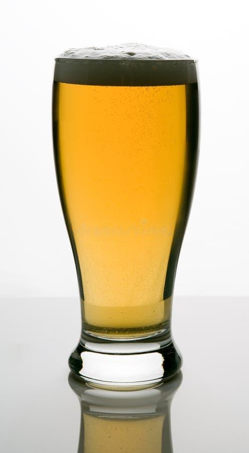 piwo zimne projektu frosty szklankę lodowatego fotografia royalty free