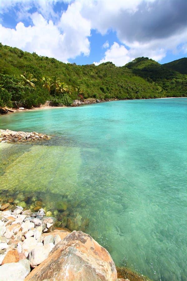 Piwowar zatoka Tortola obrazy royalty free