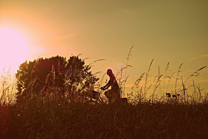 ΑΦΙΕΡΩΣΗ ΔΗΜΟΣΙΩΝ ΤΟΜΕΩΝ - pixabay-Pexels digionbew 16 25-08-16 ανακύκλωση γυναικών στο ρόδινο ήλιο ΧΑΜΗΛΟ RES DSC00704 στοκ φωτογραφία με δικαίωμα ελεύθερης χρήσης