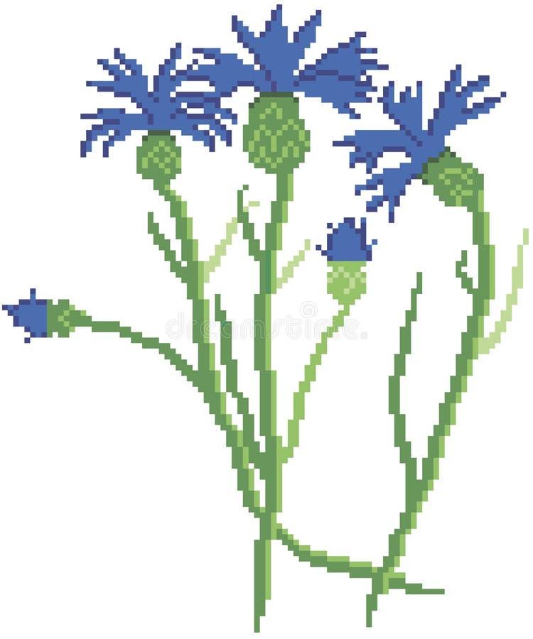 Pixelkornblumen Symbol von Wei?russland lizenzfreie stockfotografie