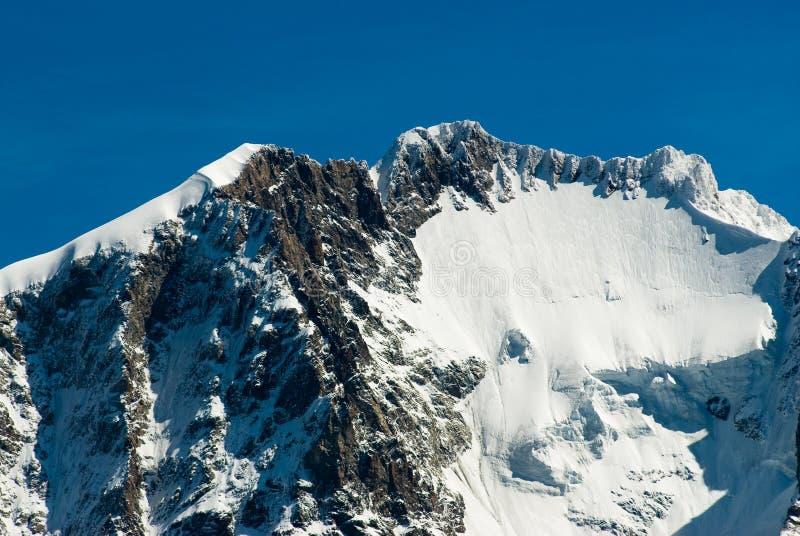 Piz Bernina imagens de stock royalty free