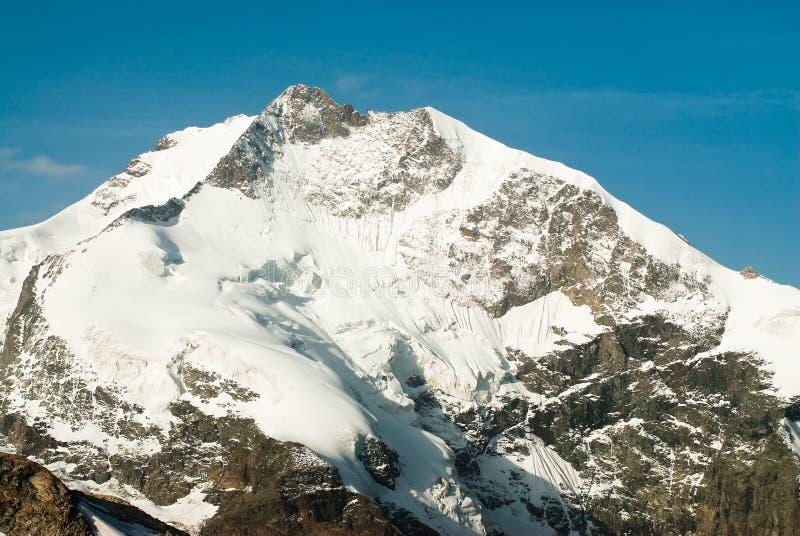 Piz Bernina imagem de stock royalty free