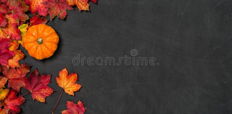 Pizarra con follaje del otoño y una calabaza foto de archivo libre de regalías