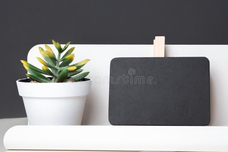 Pizarra negra del clip en la caja de lápiz moderna y la planta verde en wh imagen de archivo libre de regalías