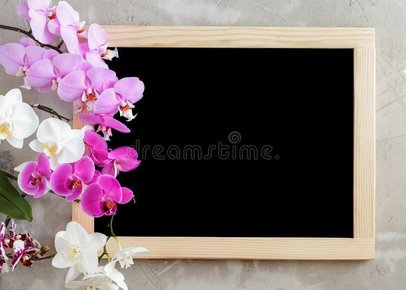 Pizarra negra en blanco con el marco de madera en fondo concreto foto de archivo libre de regalías