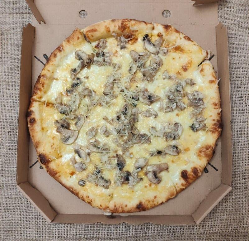 Pizza com cogumelos em caixa de papelão foto de stock royalty free
