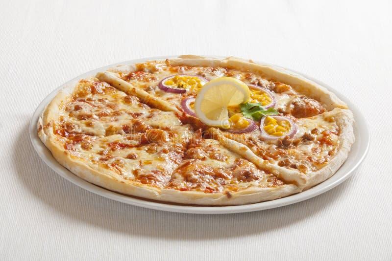 Pizza délicieuse images stock