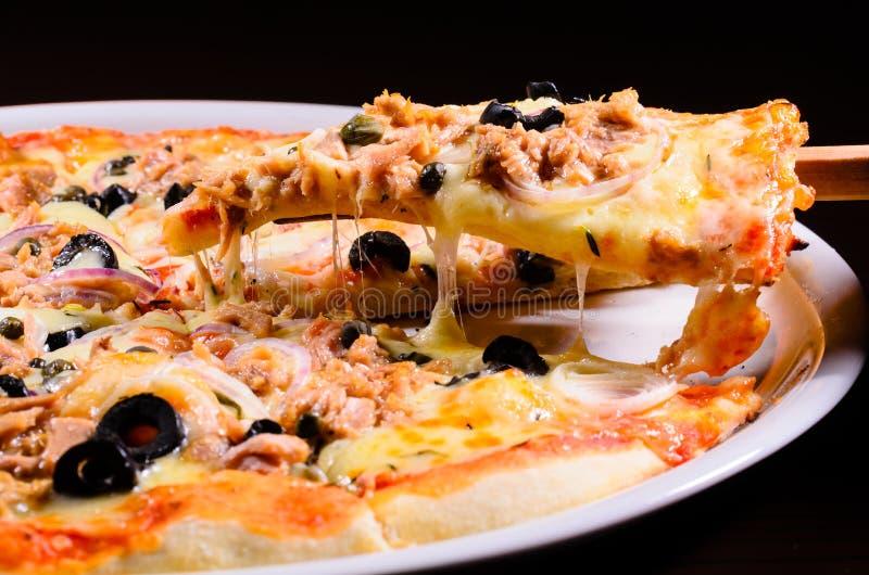 Pizza med tonfisk royaltyfri bild