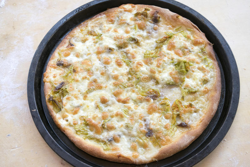 Pizza mit den Zucchiniblumen und -mozzarella gerade genommen aus heraus stockfotografie