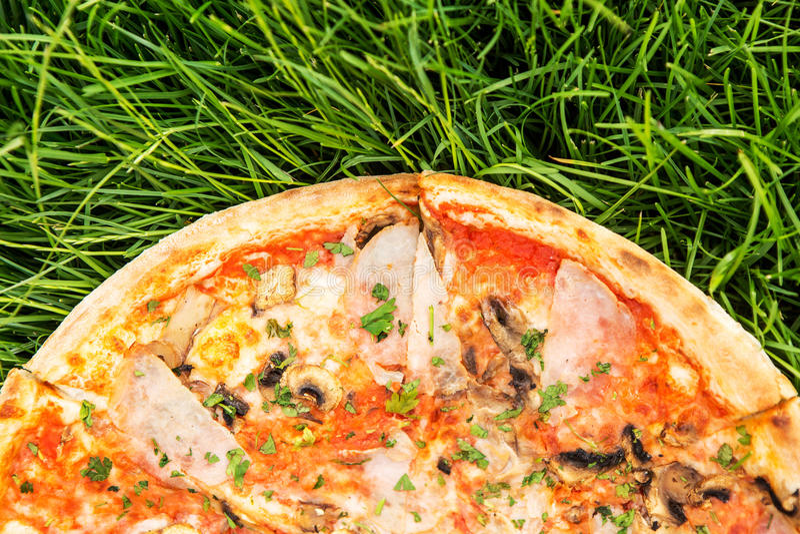 Pizza på gräsmatta royaltyfri fotografi