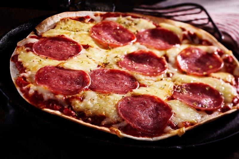 Pizza picante de la tortilla del salami con queso derretido fotografía de archivo libre de regalías