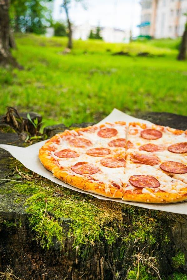 Pizza tła włoski kuchenny pepperoni pizzy biel fotografia royalty free