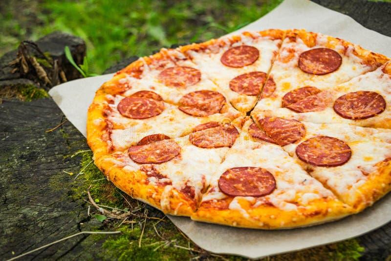 Pizza tła włoski kuchenny pepperoni pizzy biel fotografia stock