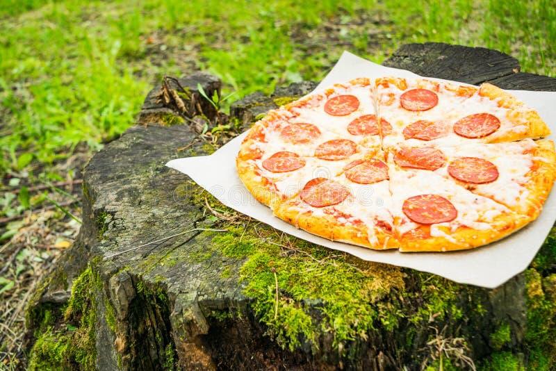 Pizza tła włoski kuchenny pepperoni pizzy biel obraz stock