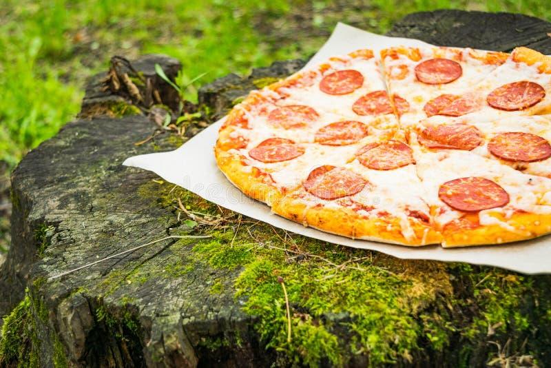 Pizza tła włoski kuchenny pepperoni pizzy biel zdjęcia royalty free