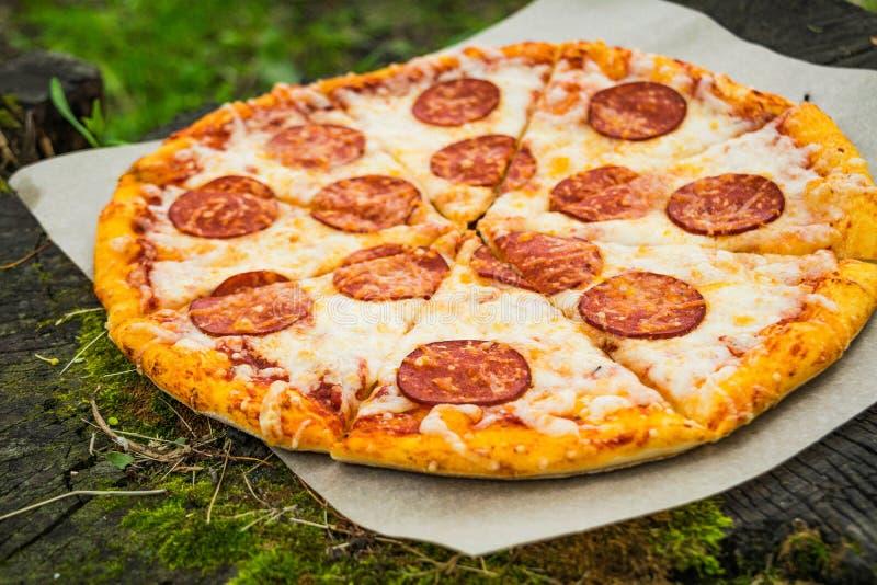 Pizza tła włoski kuchenny pepperoni pizzy biel zdjęcia stock