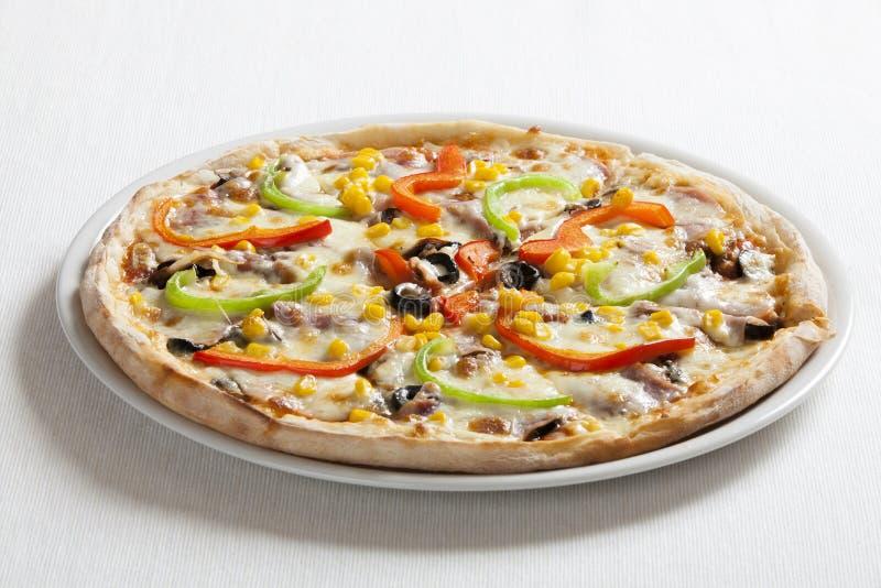 Pizzaquatrrostagioni royaltyfri foto