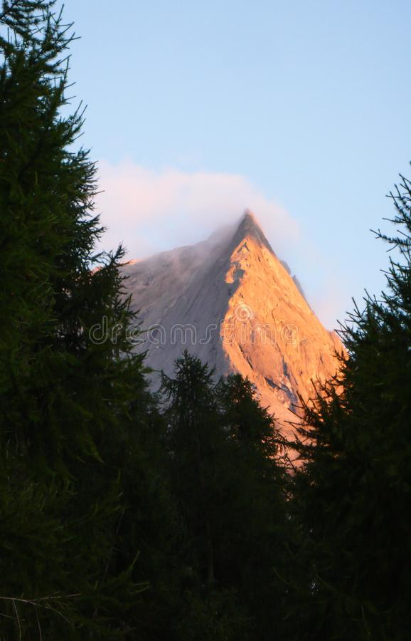 Pizzo Badile经典上升路线的看法在瑞士在温暖的晚上光的杉树构筑的瑞士阿尔卑斯 免版税库存照片