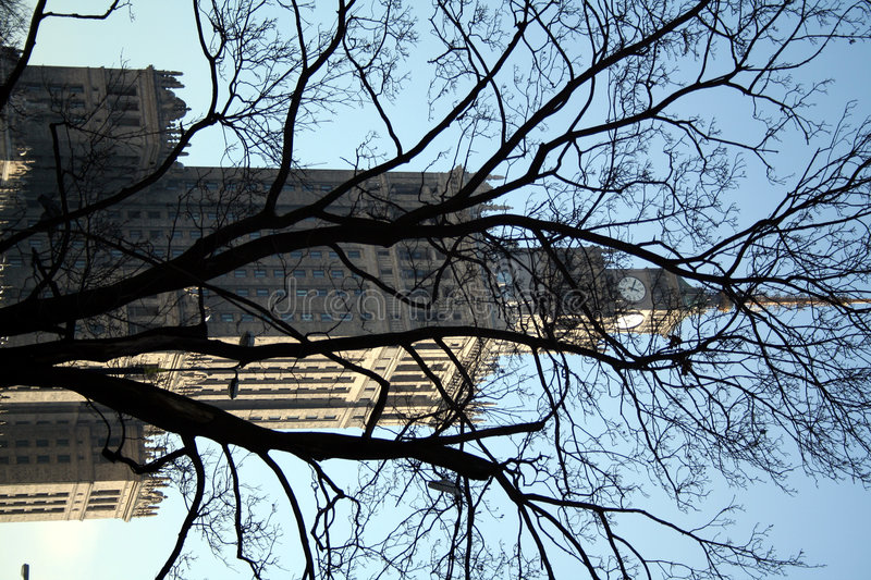 Download PKiN Through The Trees - Warsaw Famous Landmark Stock Image - Image: 539723