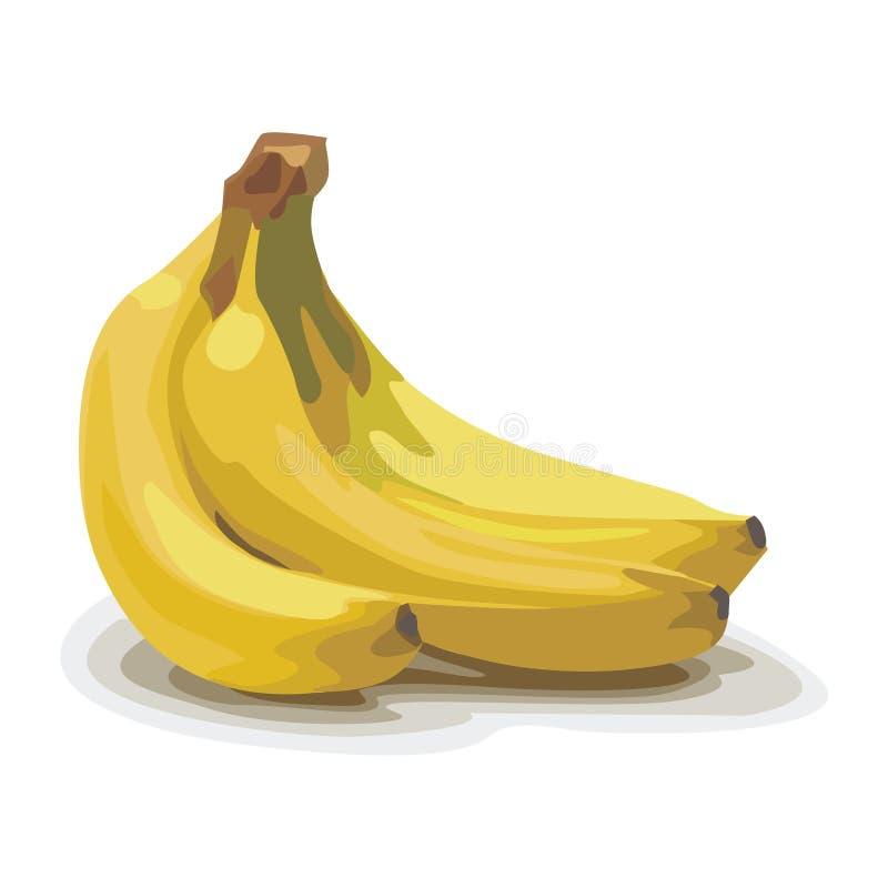 Plátano ilustración del vector