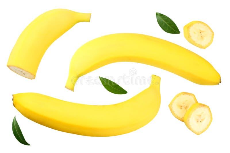 plátano cortado con las hojas verdes aisladas en el fondo blanco Visión superior imagenes de archivo