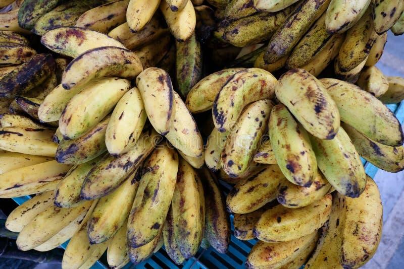 Plátano cultivado para la venta al por menor en la mercado de la fruta local fotos de archivo