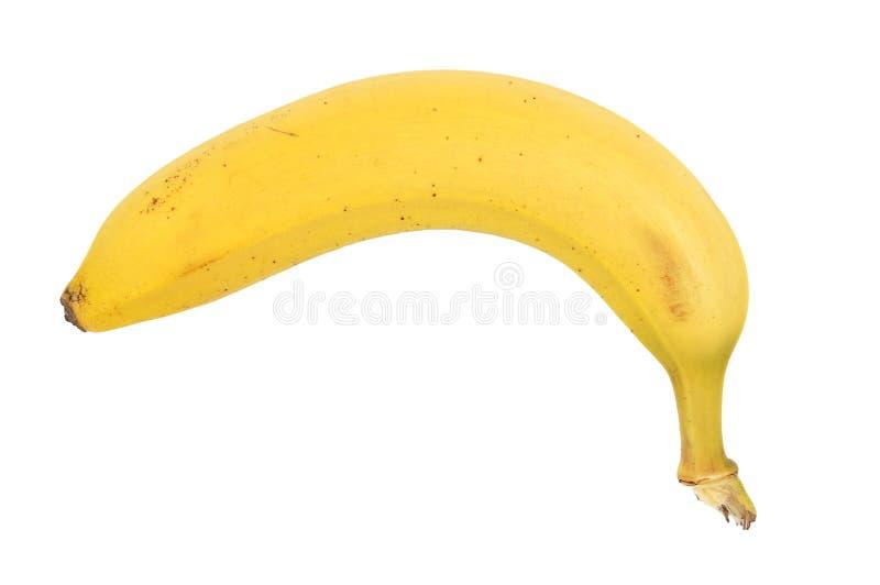 Plátano en el fondo blanco foto de archivo libre de regalías