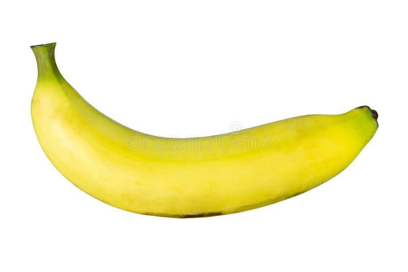 Plátano maduro fresco aislado en el fondo blanco imagenes de archivo