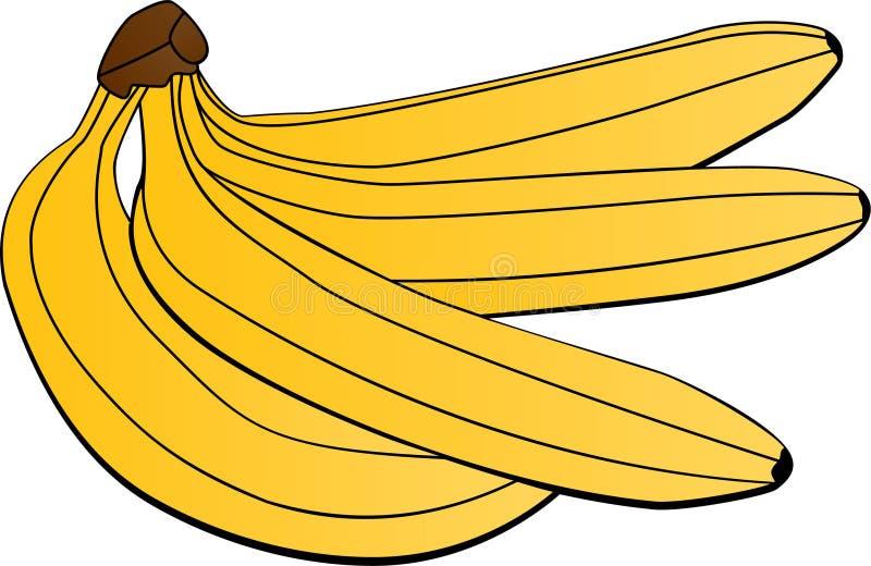 Plátanos libre illustration