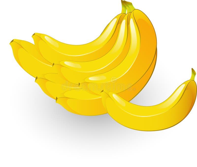 Plátanos ilustración del vector