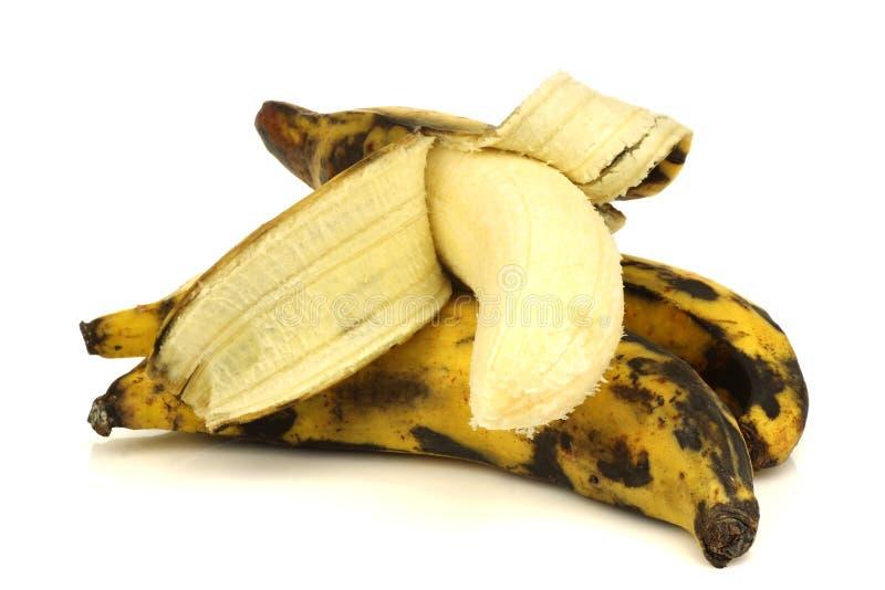 Plátanos del llantén (hornada) fotografía de archivo