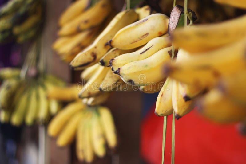 Plátanos en el mercado foto de archivo