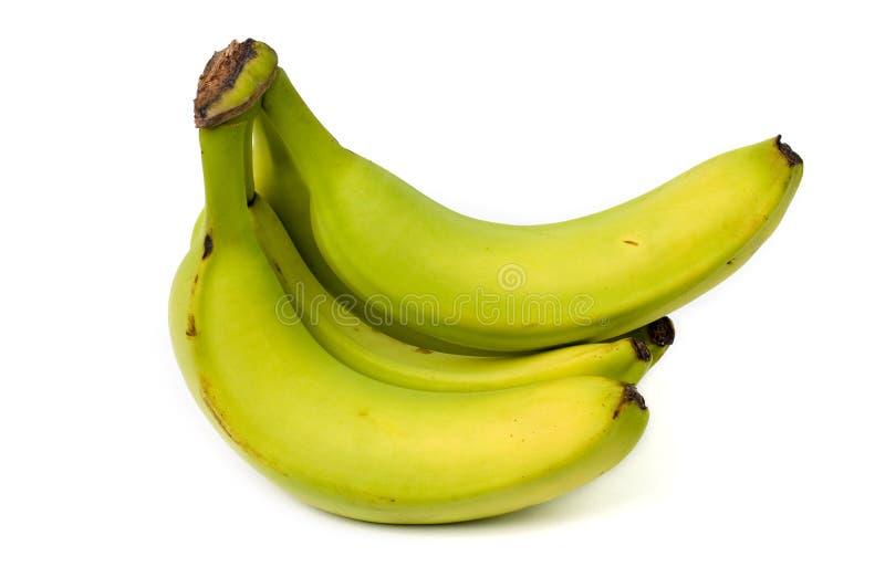Plátanos inmaduros típicos del supermercado aislados en whi foto de archivo