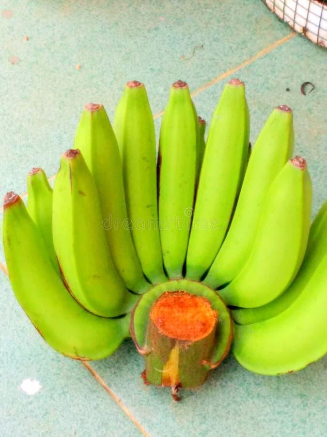 Plátanos sin procesar fotos de archivo