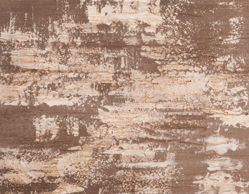 Plâtre vénitien affligé d'étain photographie stock
