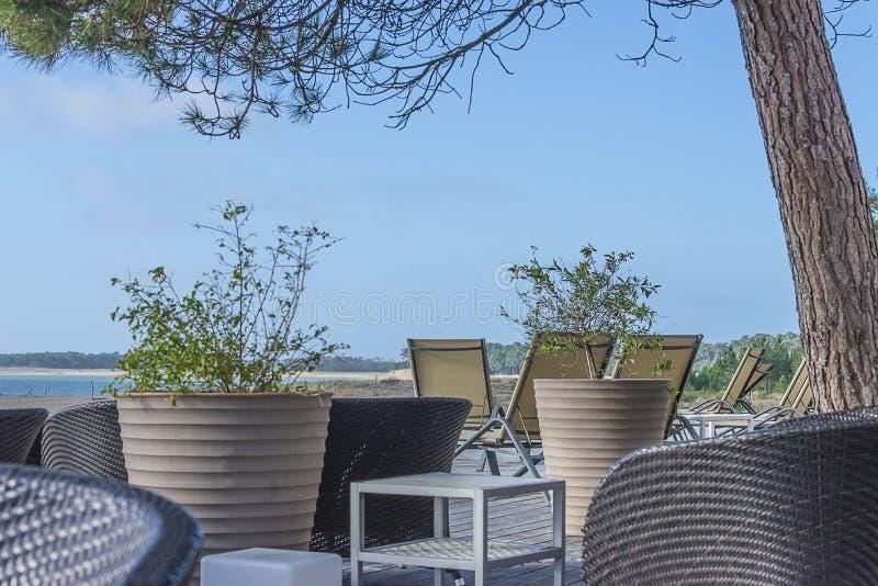 Plażowy wakacje pojęcie: łozinowi krzesła, rośliny na tarasie przed morzem i niebieskie niebo na słonecznym dniu, zdjęcia stock