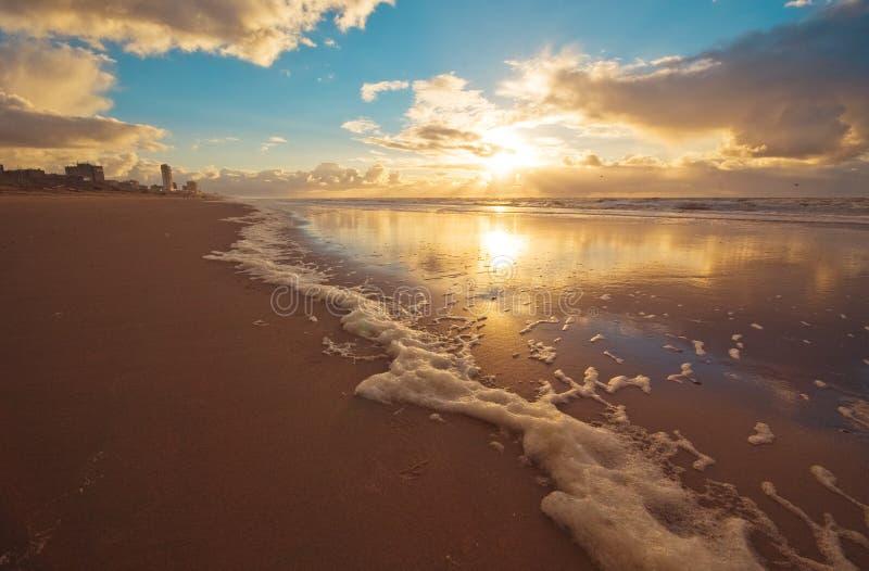 plaż fale obrazy royalty free