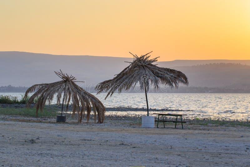 plaża jest opustoszała Kineret jezioro Stary palmowy słomiany parasol fotografia royalty free