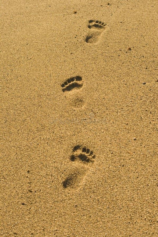 plaża kroków obrazy royalty free